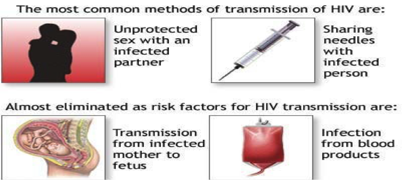 Cause and effect of aids essay